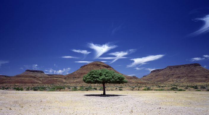 Unusual clouds  - Cirrus uncinus over Damaraland